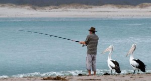 Two birds are standing behind a fisherman waiting for him to catch some fish.