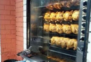 A pigeon is looking through a window at a row of birds being cooked.